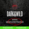 ��ź�ҳ�� (BTS) / 1�� Dark & Wild